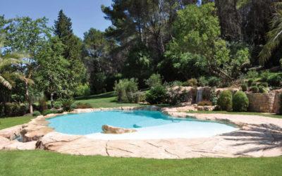 Une fabuleuse piscine paysagée à débordement